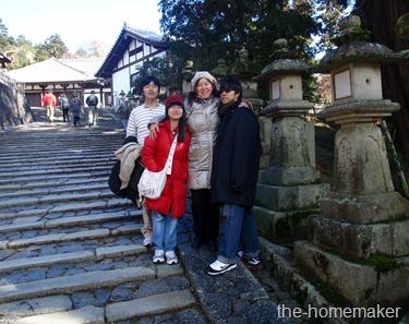 Strolling along Nara Park