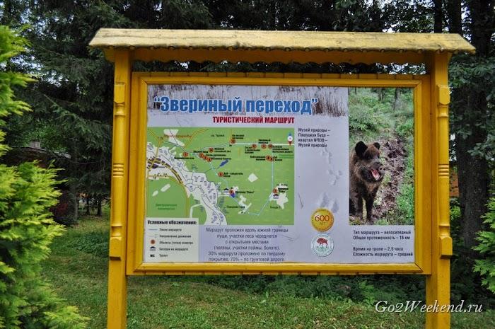 Беловежская пуща велосипедный маршрут
