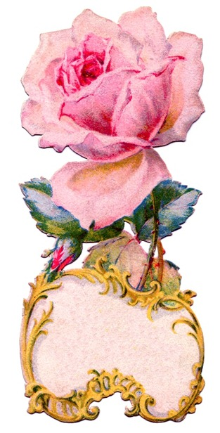 pink rose antique  Image GraphicsFairy006c