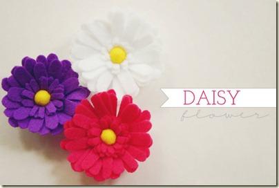 daisy-flower-1