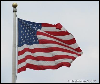 US Flag0811 (5)