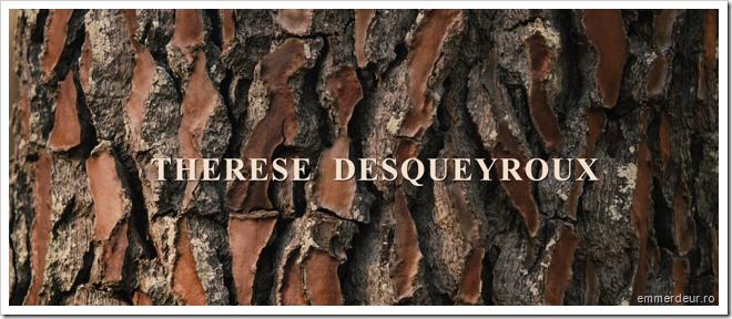 threse desqueyroux claude miller_10