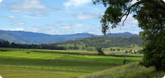 Peel River Valley near Woolomin