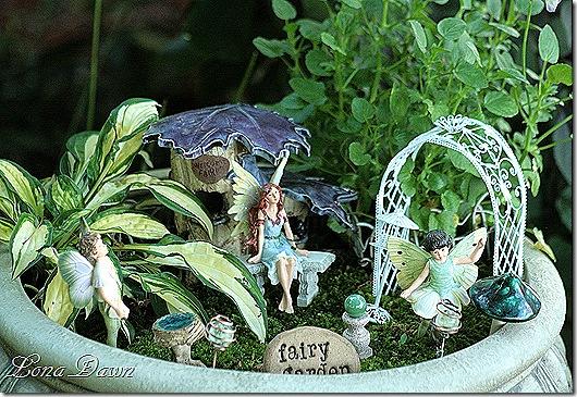 Fairy_Garden_June8