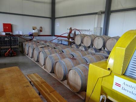 Drumul vinului -Basarabia: Scoala vinificatie Nisporeni