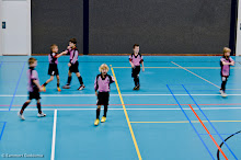 SEIZOEN 2012-2013 - WVV F1 - 22 DEC - WVV F1 - Zaalcompetitie