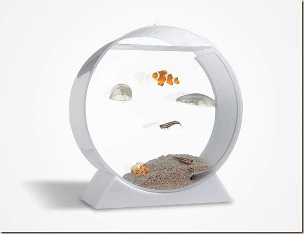 Aquariums créatifs et insolites-028