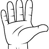 Partes del cuerpo: mano