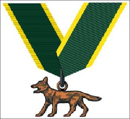 Bronze-Wolf-Award