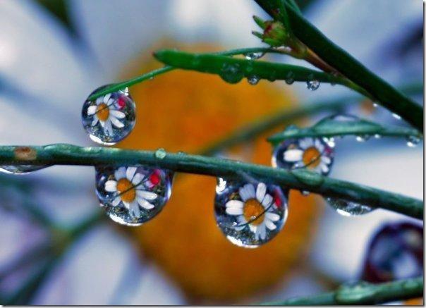 gota de agua (5)