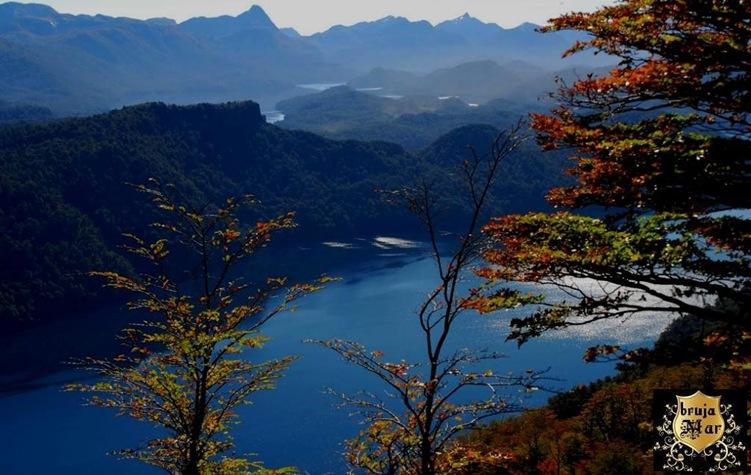 Argentina,Neuquen,bosques,debrujaMar-0712