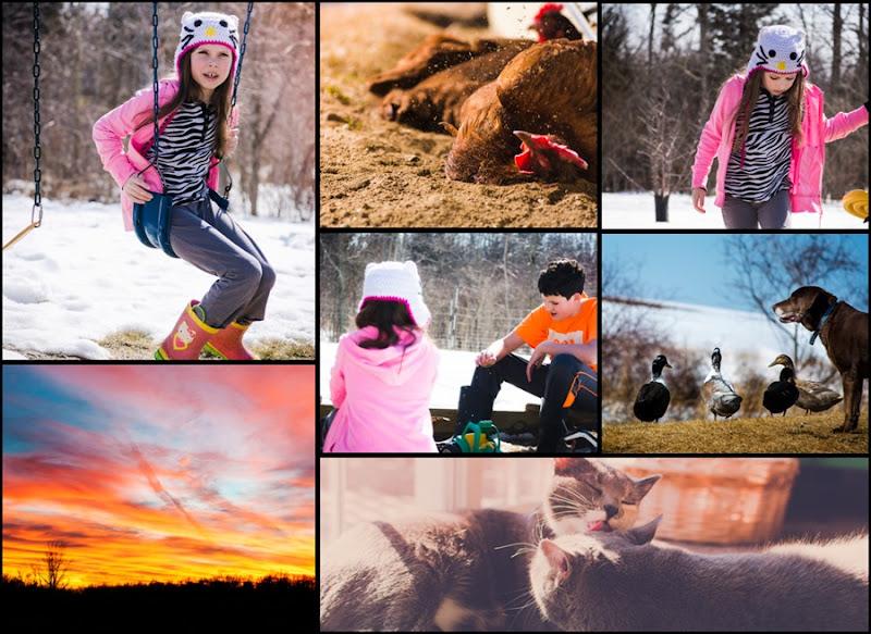 week 11 collage