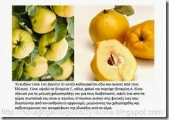 τα φρούτα του φθινοπώρου (2)