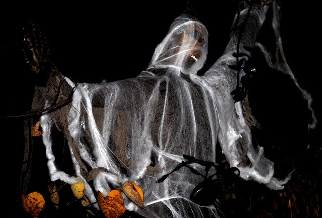 Halloween 2011 017