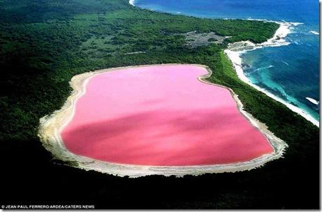 hillierr-lacul roz