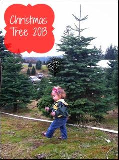 Many Waters Christmas Tree 2013