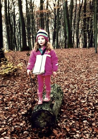 woods008