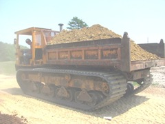 bog moving sand