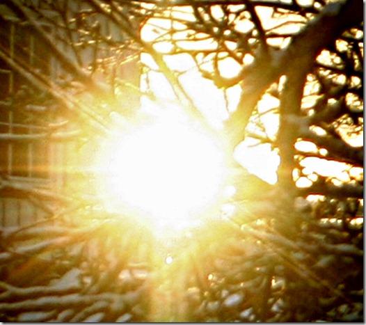 solnedgangepletre2