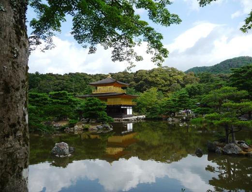 japão - kyoto - templo kinkakuji - Gloria Ishizaka