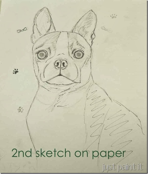 boston-terrier-sketch-B