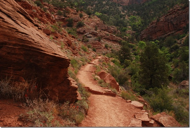 05-05-13 C Watchman Trail 021