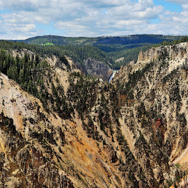 Yellowstone Canyon by Roy Walter - Landscapes Travel ( hills, national park, yellowstone, mountains, landscape )