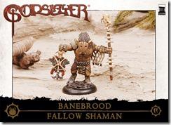 CharacterBox_Banebrood_FallowShaman