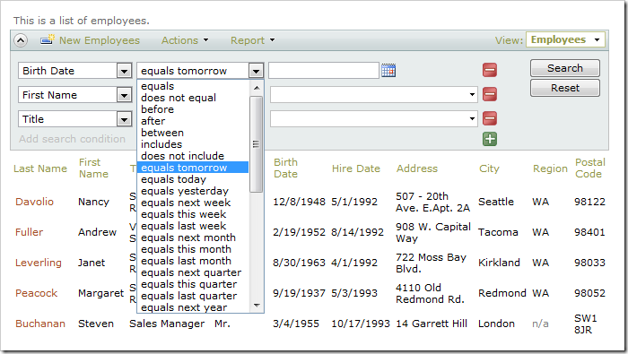 Employees grid view with advanced search bar. Birth Date search options are visible.
