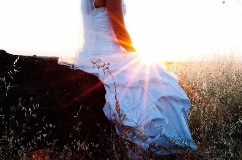 Lauren Trash the dress-10