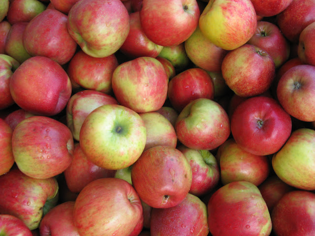 April 2010 - 3rd Place / Apples from Bellewood Acres / Credit: Jonathan Lytle