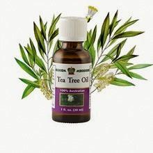 Tea Tree Oil / Масло чайного дерева косметическое