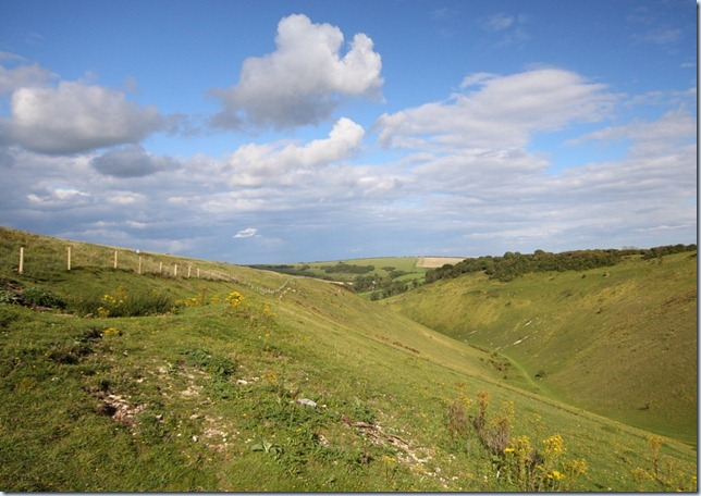 devilsdyke,south_downs