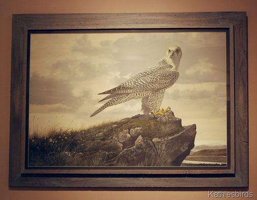 10. Gyr Falcon by RV Clem-kab