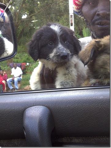Nairobi-20111118-01172