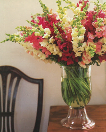 When they're on view in a clear vase, straight stems become more shapely and dynamic if they're given a slight twist. (The Best of Martha Stewart Living -- Arranging Flowers)