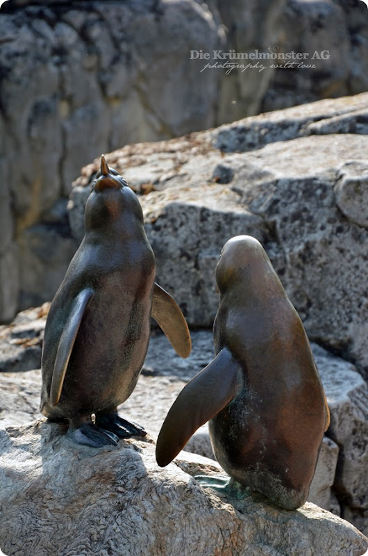 Zoo Frankfurt 15082013 (2)