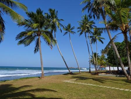 10. Plaje Sri Lanka.JPG