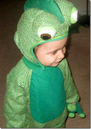 disfraz de camaleon (4)