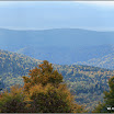 2012-baran-dorota-088.jpg