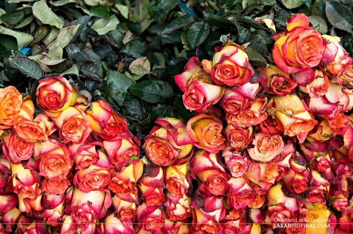 Roses Ready for Arrangement at Dangwa Flower Market in Manila