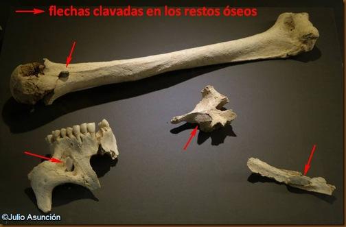 Restos óseo con puntas de sílex incrustadas - Hipogeo de Longar - Museo de Navarra