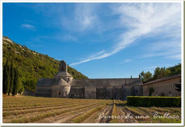 Abadia de Senanque-4