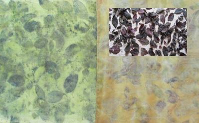 ECO PRINT Blutpflaumenblätter auf Wolle und Seide