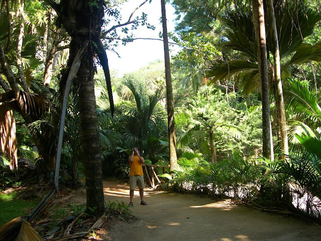 seychelles6_20070412_1082430147.jpg