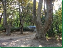 b-tree