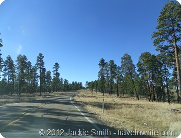 AZroadtrip2012 068
