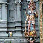 Shri-Lanka (20).jpg