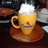 chocomel - best chocolate milk in the world - not kidding in IJmuiden, Noord Holland, Netherlands