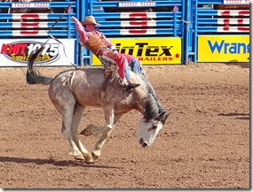 Tucson Rodeo 016